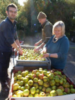 Juicing workday Oct  2012_015_1.JPG